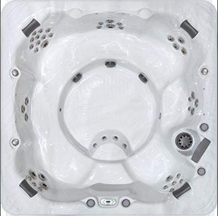 Precision 8 Hot Tub